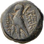 SIRIA Antioco VIII (121-96 a.C.) AE - Testa ...