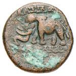 SIRIA Alessandro I Bala (150-145 a.C.) AE - ...