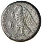 EGITTO Tolomeo II (305-283 a.C.) AE - Testa ...