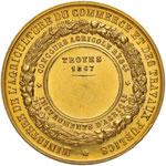 Napoleone III (1852-1870) Medaglia 1867 ...