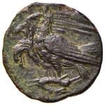 SICILIA Agrigento AE (279-241 a.C.) Testa di ...
