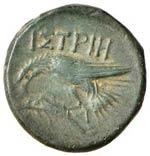 TRACIA Istros AE (IV sec. a.C.) Testa a d. ...