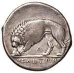 LUCANIA Velia Statere (275-250 a.C.) Busto ...