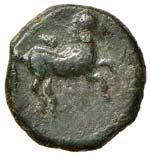 SICILIA Solous AE (300-241 a.C.) Testa ...
