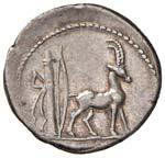 Plancia - Cn. Plancius - Denario (55 a.C.) ...