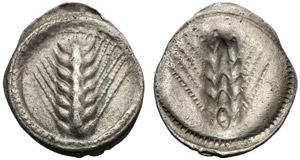 Lucania, Obolo, Metaponto, c. 540-510 a.C.; ...