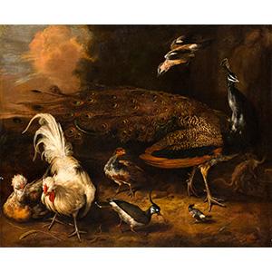 DAVID DE CONINCK (Anversa, 1642/44 – ...