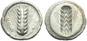 Lucania, Metapontion, Drachm, c. 540-510 BC; ...