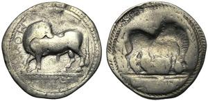 Lucania, Drachm, Sirinos/Pyxoes, c. 540-510 ...
