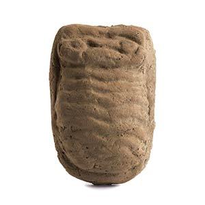Utero votivo Area etrusco-laziale-campana, ...