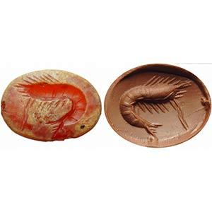 Intaglio romano in corniola. Gambero. ...
