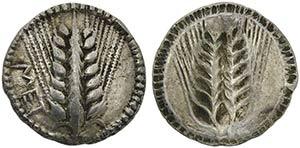 Lucania, Metapontion, Drachm, ca. 540-510 ...