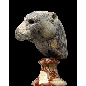 Pavonazzetto marble panther protome 1st - ...