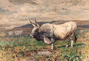 ENRICO COLEMANRome, 1846 - 1911Taurus in the ...