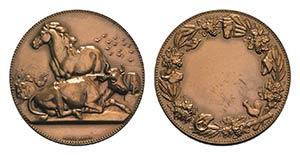 France, Æ Medal 1886 (50mm, 74.57g, 12h), ...